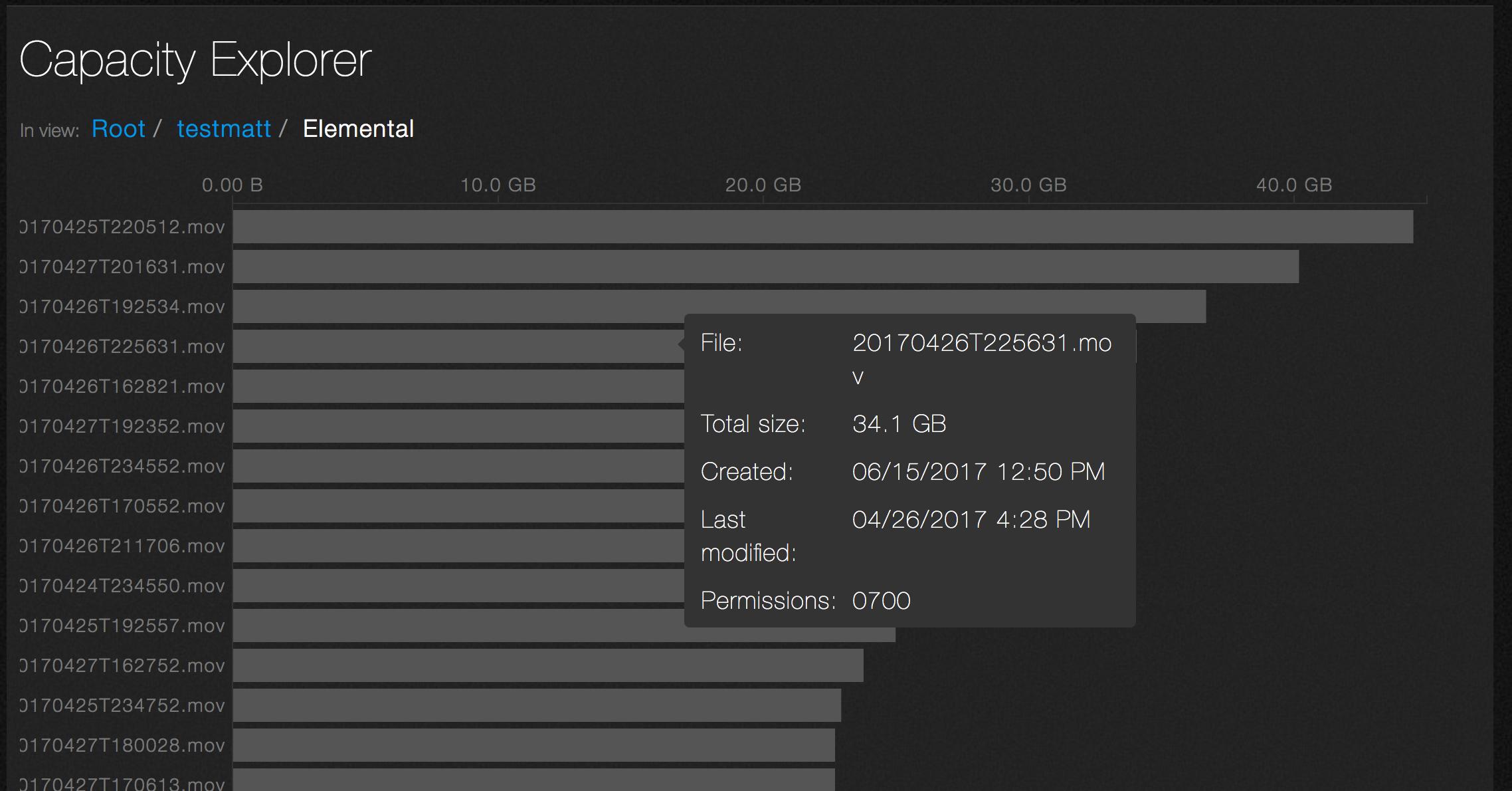 Capacity Explorer - File Detail